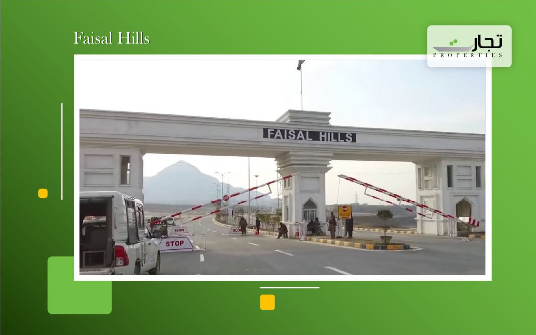 Faisal Hills_Small Business Ideas copy 5
