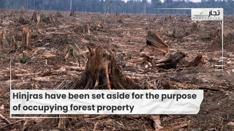Hinjras have been set aside for the purpose of occupying forest property