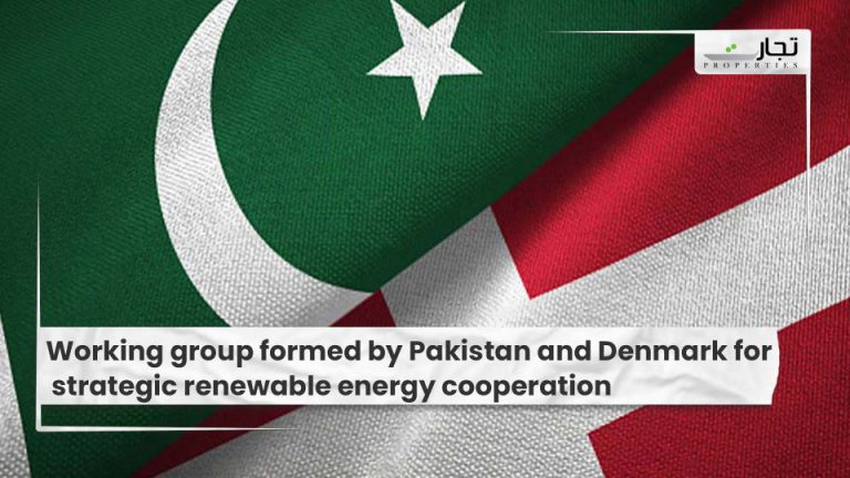Working group formed by Pakistan and Denmark for strategic renewable energy cooperation